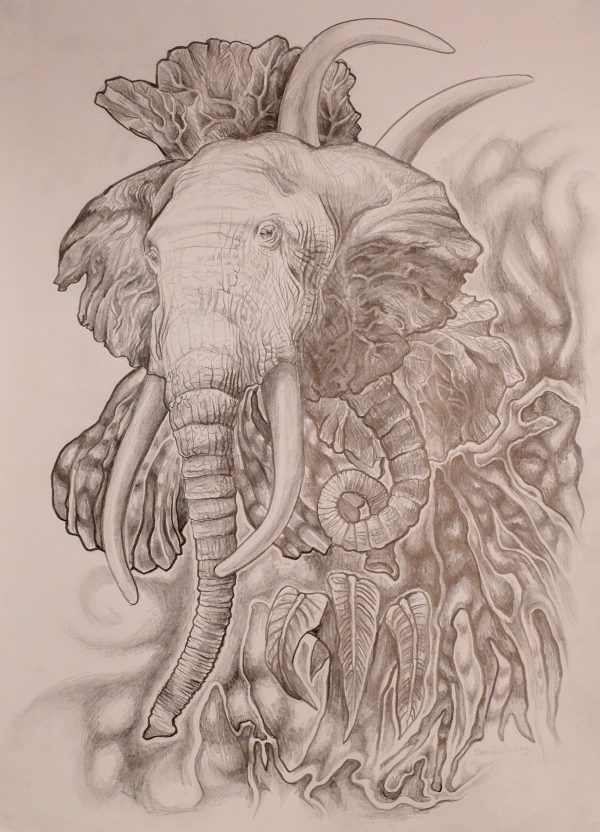 "Photo of Renee Garling's ""Elephant'"