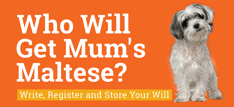 Will Week 2019 - Who Will Get Mum's Maltese
