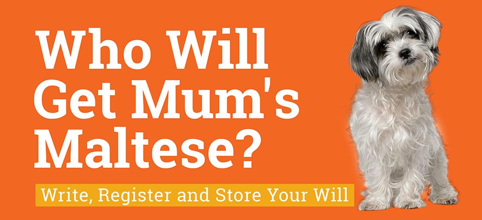 Will Week 2019 - Who Will Get Mum's Maltese